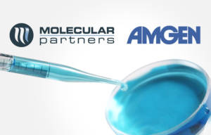 Molecular Partners and Amgen